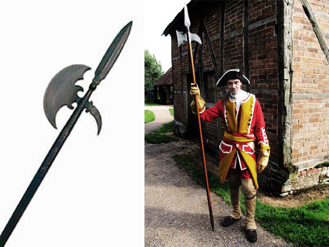 18th century british army sergeant with halberd