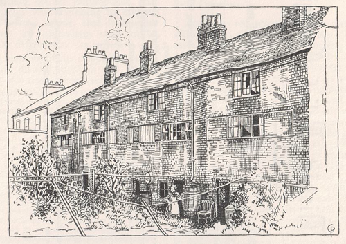 the back of cabbage row, drawing by cicely pickering