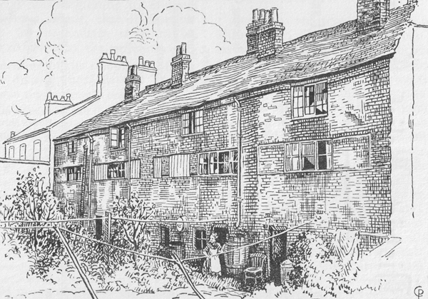 Rear view of Cabbage Row (drawing by Cicely Pickering, 1930s)